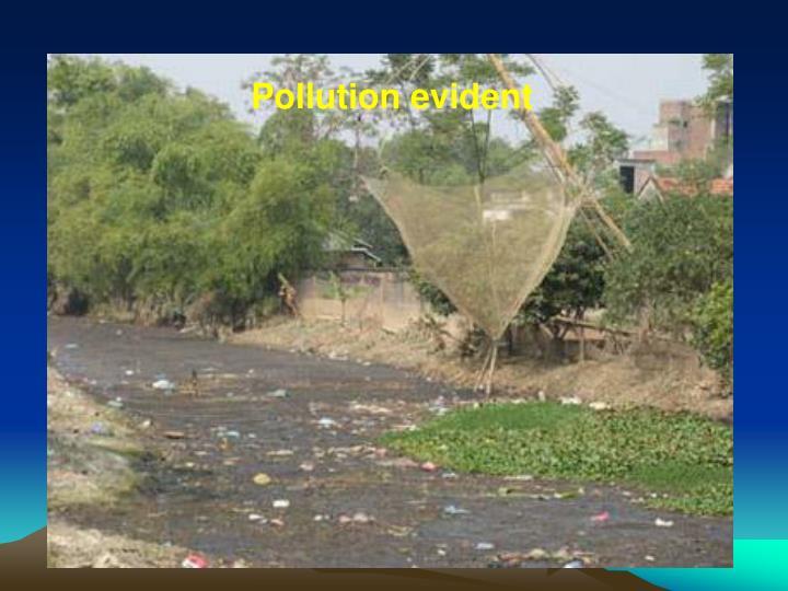Pollution evident
