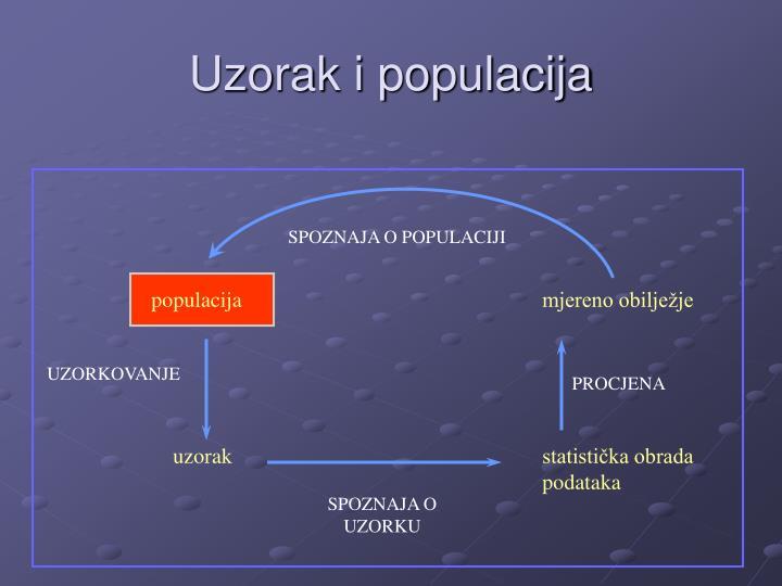 Uzorak i populacija
