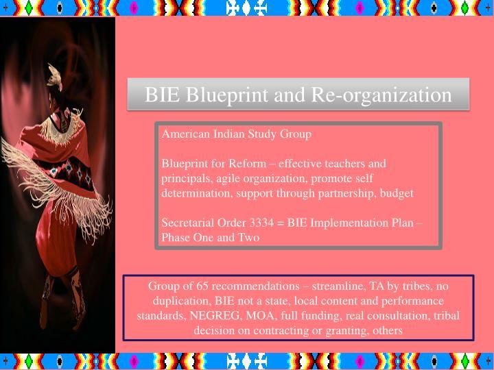 BIE Blueprint and Re-organization