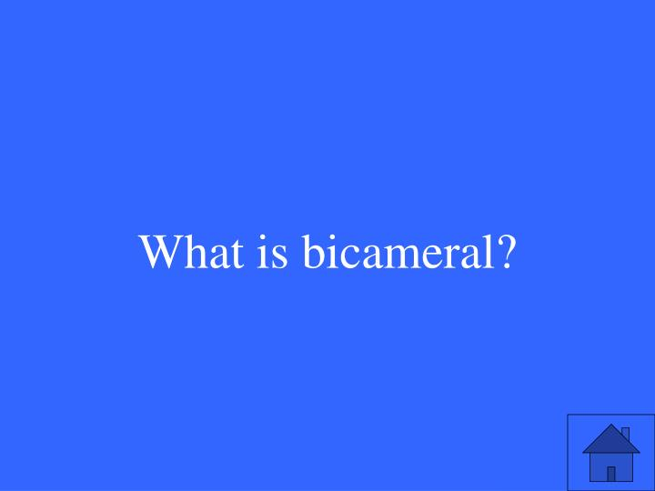 What is bicameral?
