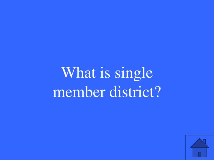What is single member district?