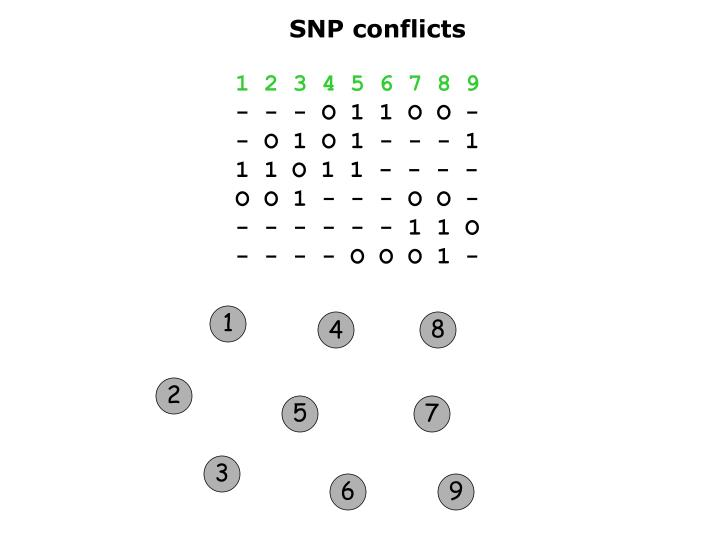 SNP conflicts
