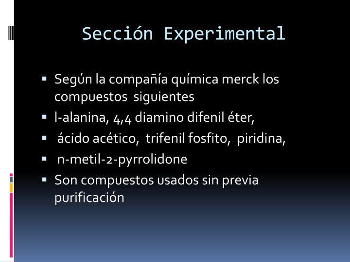 Sección Experimental