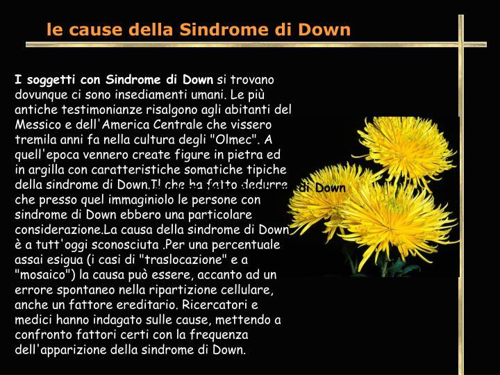 le cause della Sindrome di Down