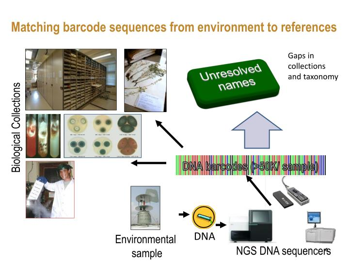 Matching barcode sequences from environment to references