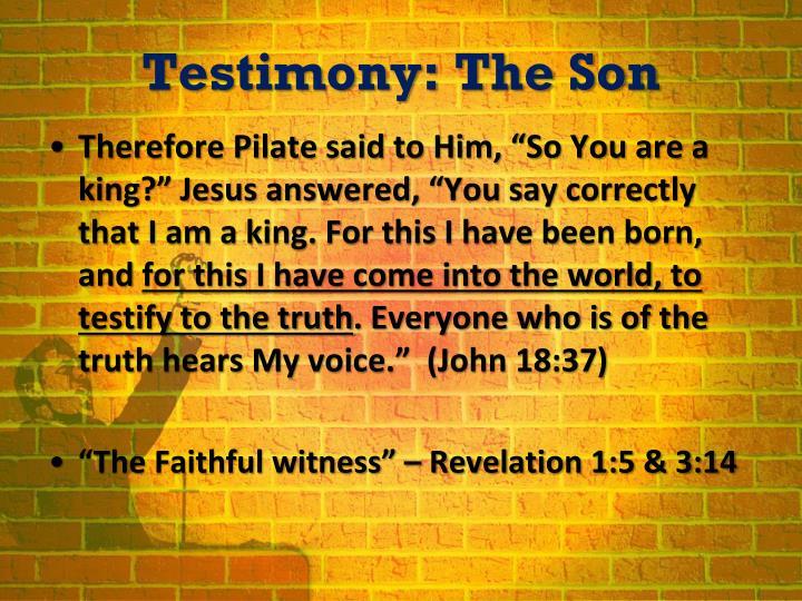 Testimony: The Son