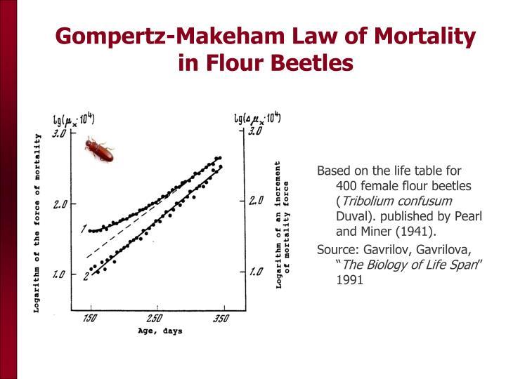 Gompertz-Makeham Law of Mortality in Flour Beetles