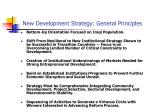 new development strategy general principles