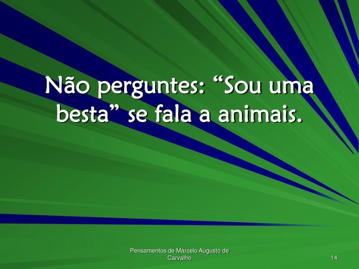 """Não perguntes: """"Sou uma besta"""" se fala a animais."""