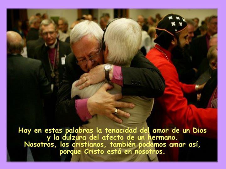 Hay en estas palabras la tenacidad del amor de un Dios y la dulzura del afecto de un hermano.