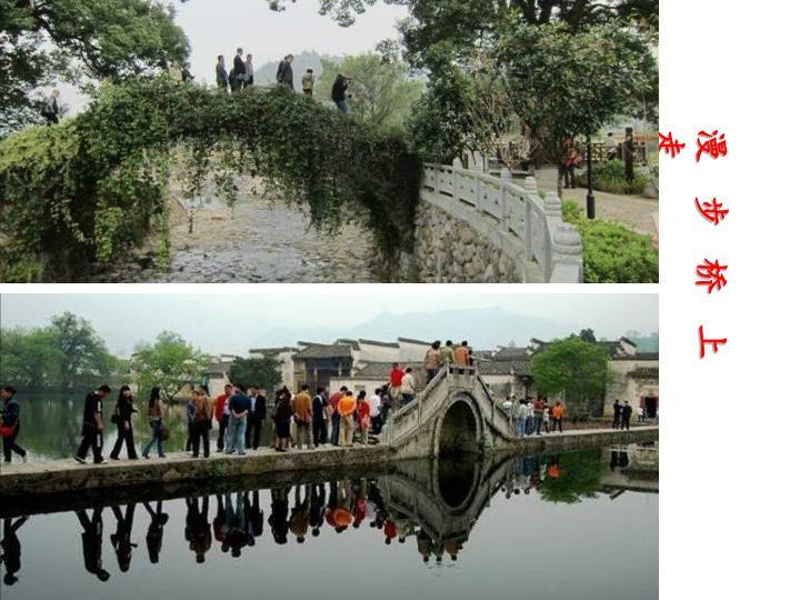 漫   步   桥   上   走