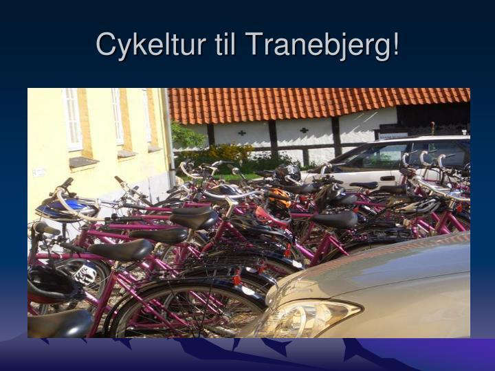 Cykeltur til tranebjerg