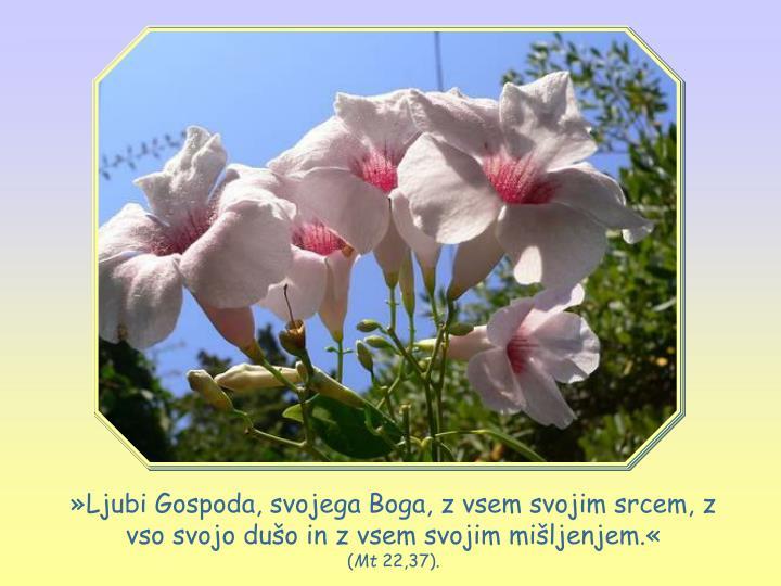 »Ljubi Gospoda, svojega Boga, z vsem svojim srcem, z vso svojo dušo in z vsem svojim mišljenjem.«