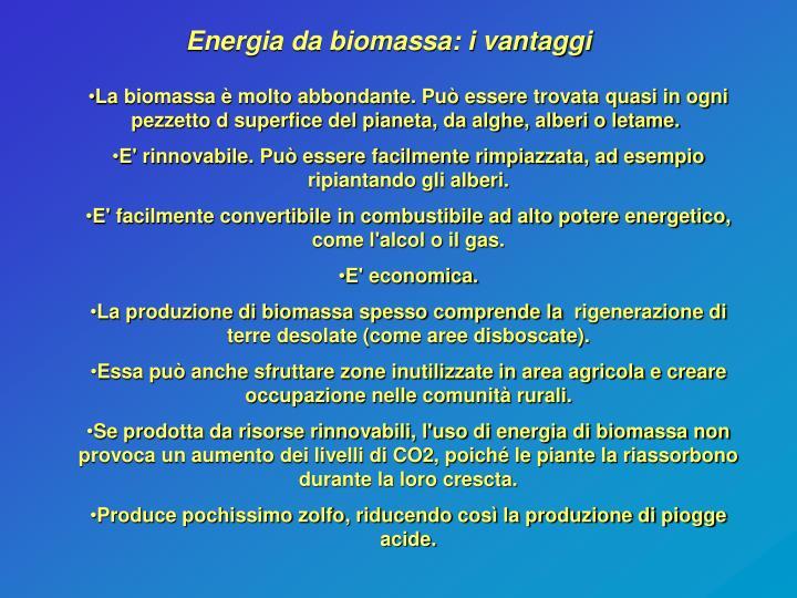 Energia da biomassa: i vantaggi