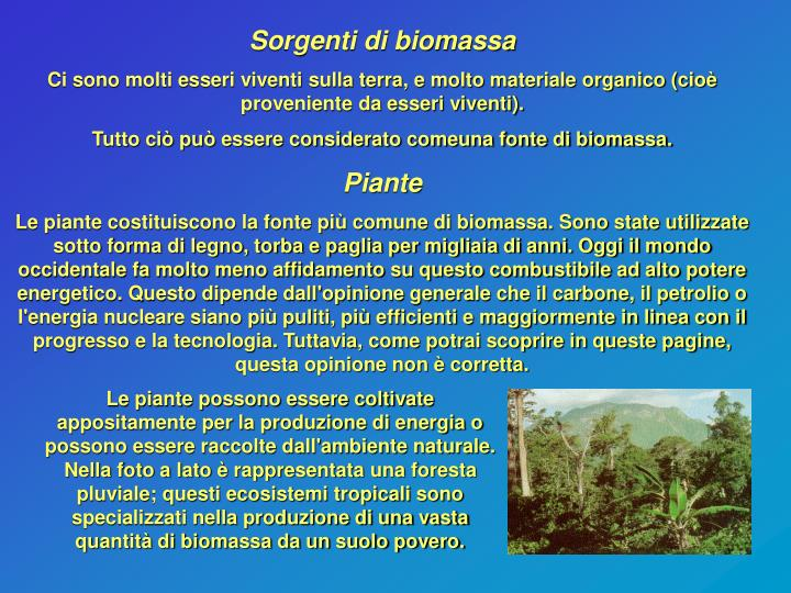 Sorgenti di biomassa