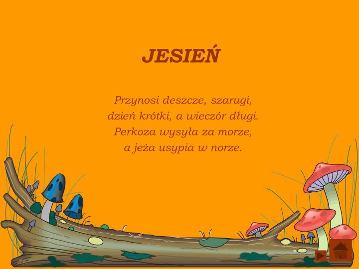Jesie1
