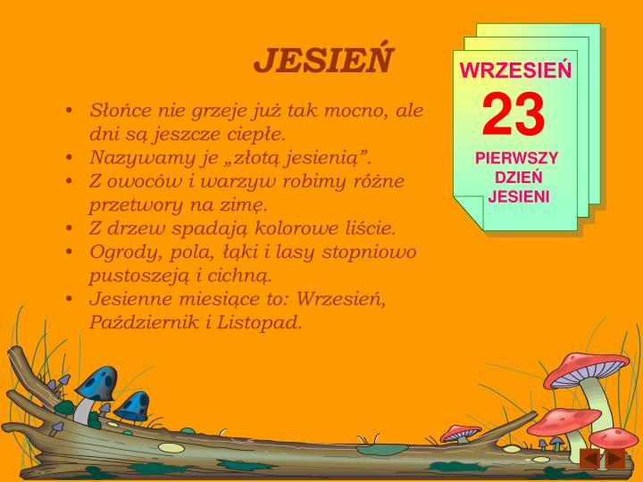 Jesie2
