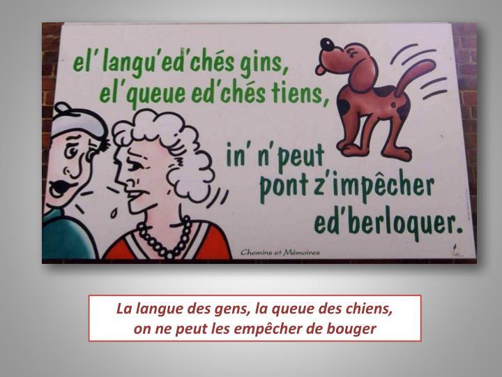 La langue des gens, la queue des chiens,
