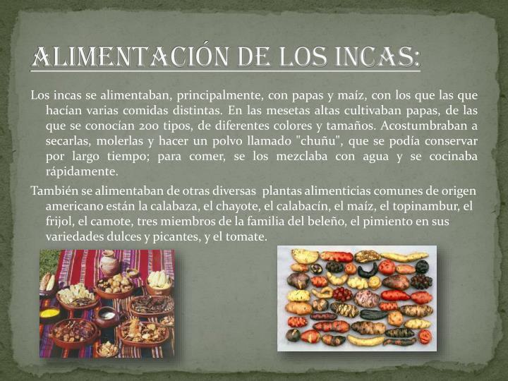 ALIMENTACIÓN DE LOS INCAS: