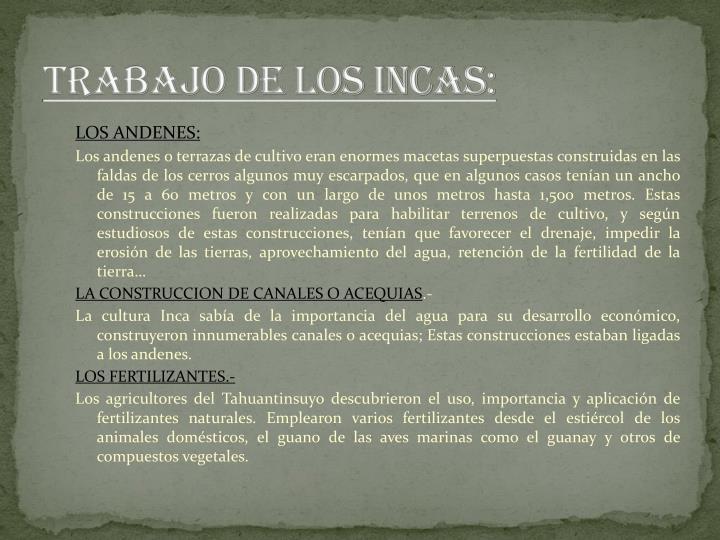 TRABAJO DE LOS INCAS: