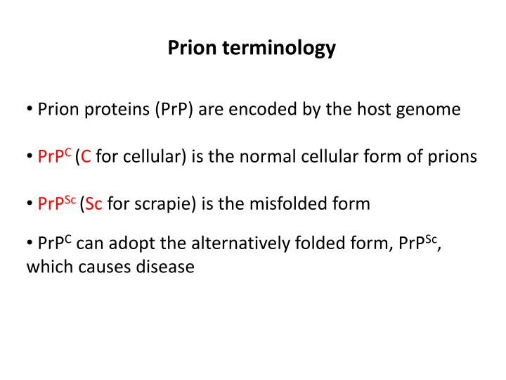 Prion terminology