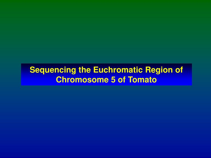 Sequencing the Euchromatic Region of Chromosome 5 of Tomato