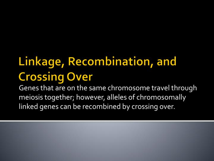 Genes that are on the same chromosome travel through meiosis together; however, alleles of chromosomally linked genes can be recombined by crossing over.