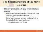 the social structure of the slave colonies