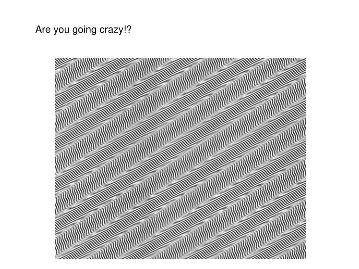 Are you going crazy!?