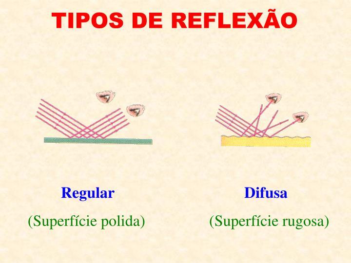 TIPOS DE REFLEXÃO