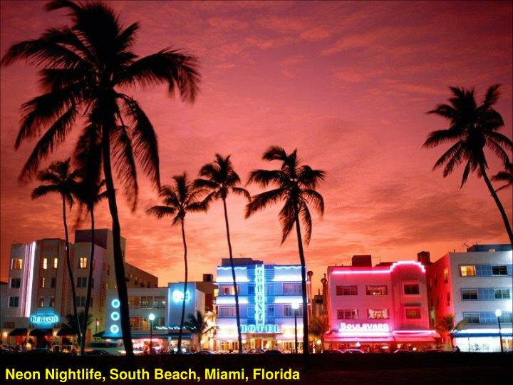 Neon Nightlife, South Beach, Miami, Florida