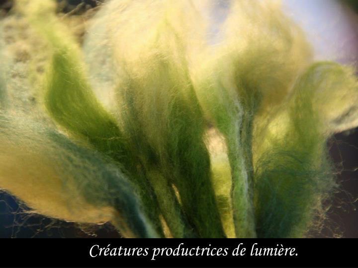 Créatures productrices de lumière.