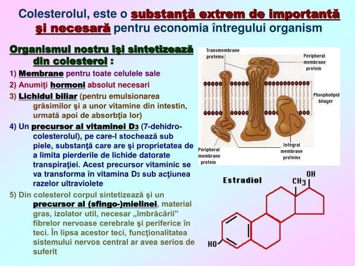 Colesterolul este o substan extrem de important i necesar pentru economia ntregului organism