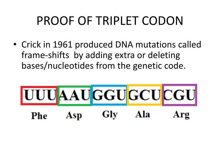 PROOF OF TRIPLET CODON