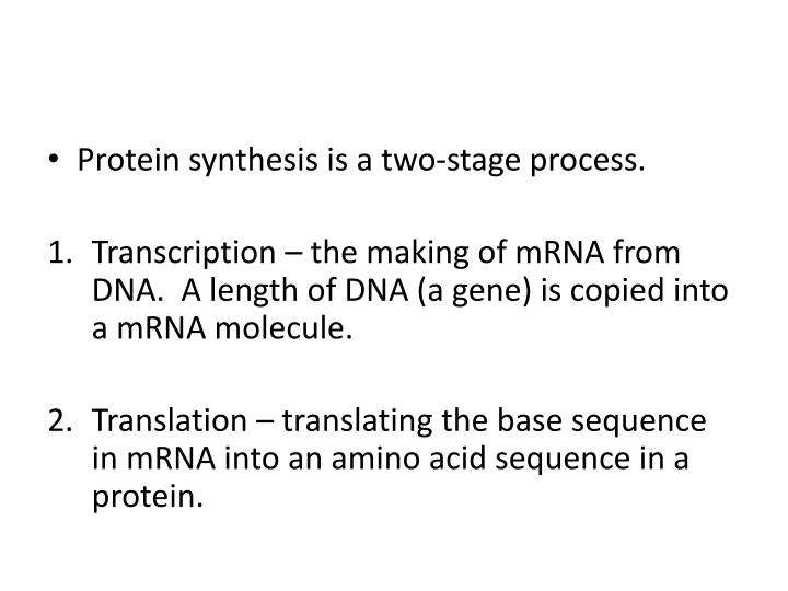 Protein synthesis is a two-stage process.