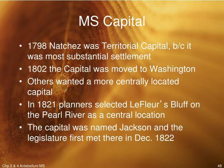 MS Capital