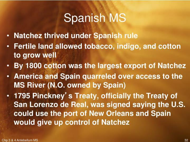 Spanish MS