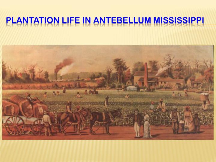Plantation Life IN ANTEBELLUM MISSISSIPPI