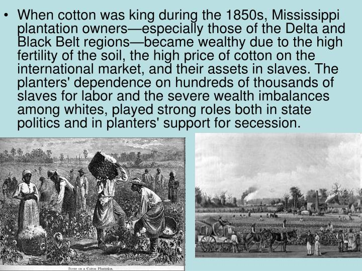 When cotton was king during the 1850s, Mississippi plantation owners—especially those of the Delta and Black Belt regions—became wealthy due to the high fertility of the soil, the high price of cotton on the international market, and their assets in slaves. The planters' dependence on hundreds of thousands of slaves for labor and the severe wealth imbalances among whites, played strong roles both in state politics and in planters' support for secession.