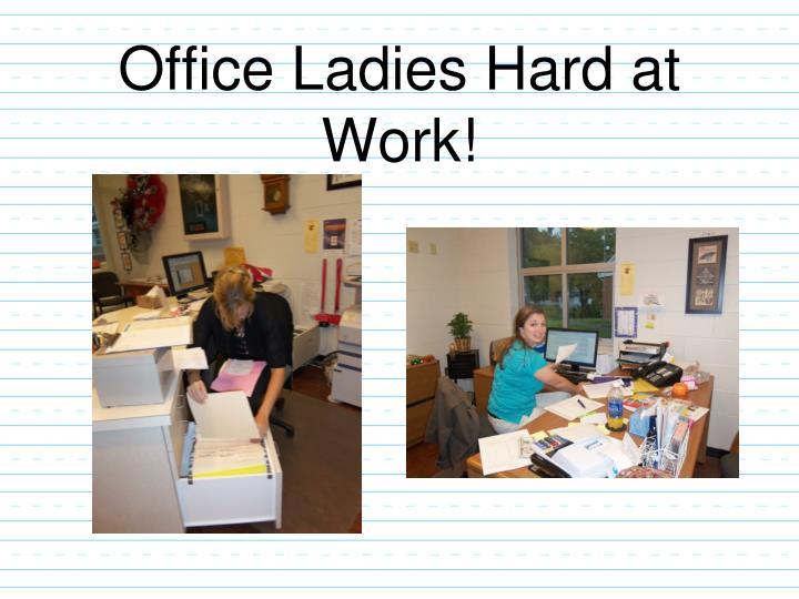 Office Ladies Hard at Work!