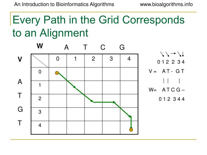 Every Path in the Grid Corresponds to an Alignment