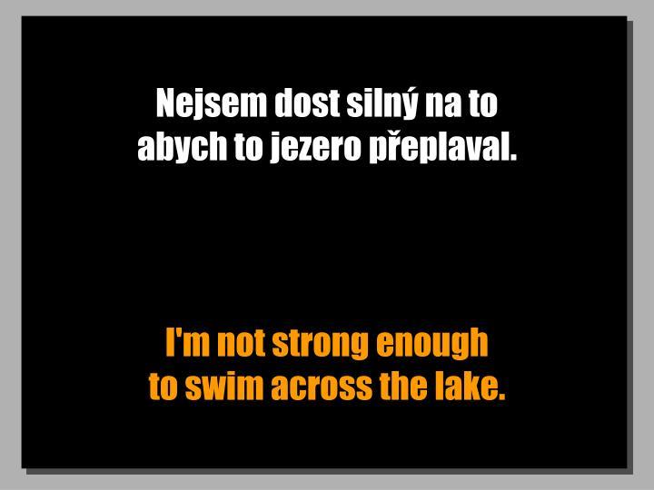 Nejsem dost silný na to                       abych to jezero přeplaval.