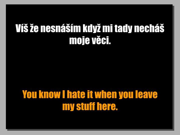 Víš že nesnáším když mi tady necháš moje věci.