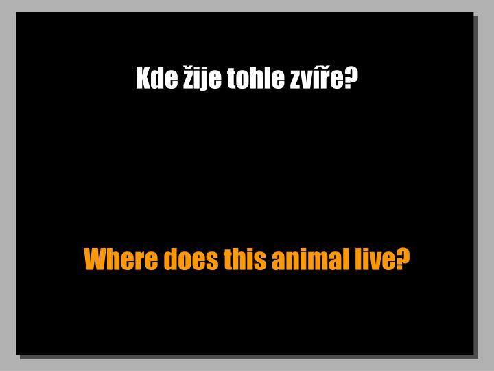 Kde žije tohle zvíře?
