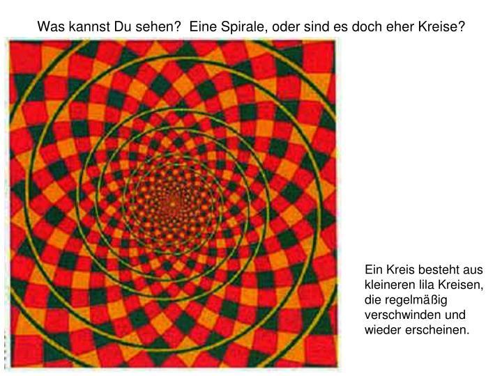 Was kannst Du sehen?  Eine Spirale, oder sind es doch eher Kreise?