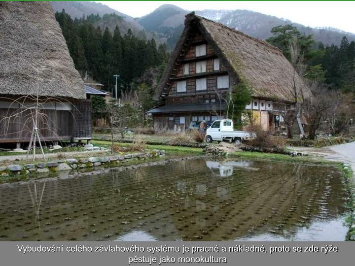 Vybudování celého závlahového systému je pracné a nákladné, proto se zde rýže pěstuje jako monokultura