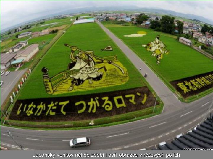 Japonský venkov někde zdobí i obří obrazce v rýžových polích