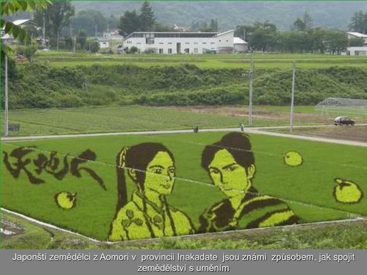 Japonští zemědělci z Aomori v  provincii Inakadate  jsou známi  způsob