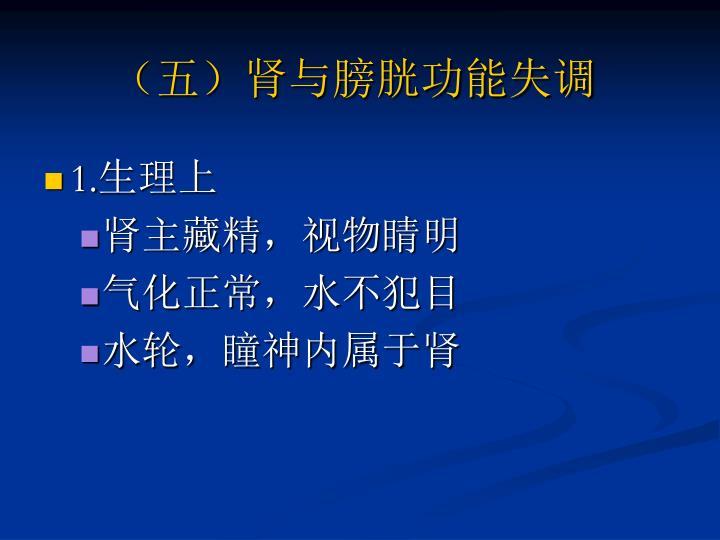 (五)肾与膀胱功能失调