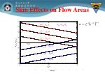 skin effects on flow areas